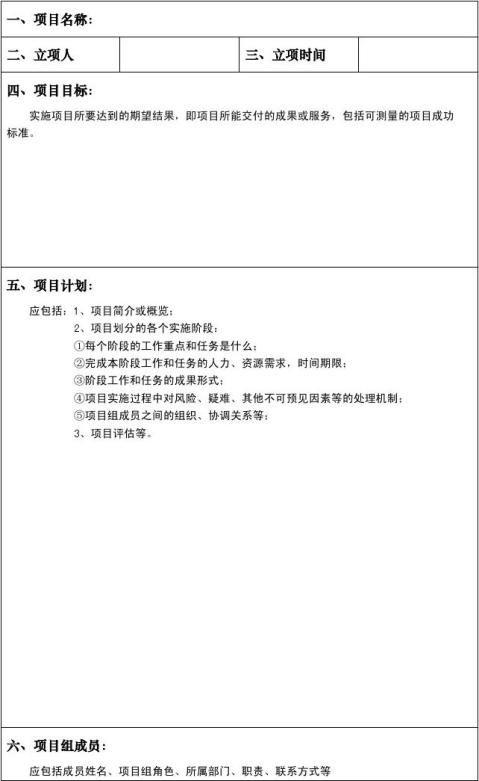 软件项目立项报告模版