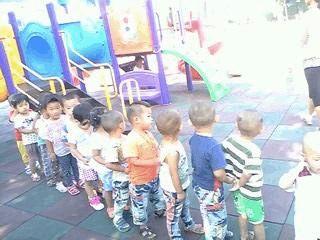 幼儿园社会实践总结
