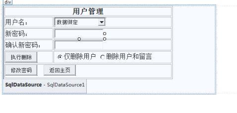 WEB应用实训报告