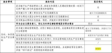 主要负责人履职情况报告表