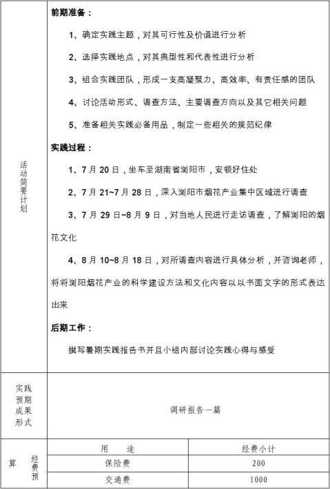 20xx年暑期社会实践团队项目申报书