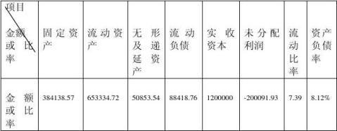 公司商业融资计划书模板