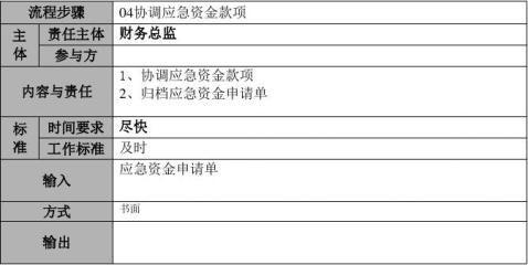 00cwzx04月度资金计划管理流程说明