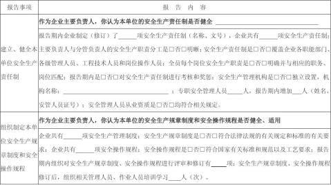 化工生产企业主要负责人安全生产履职情况报告表