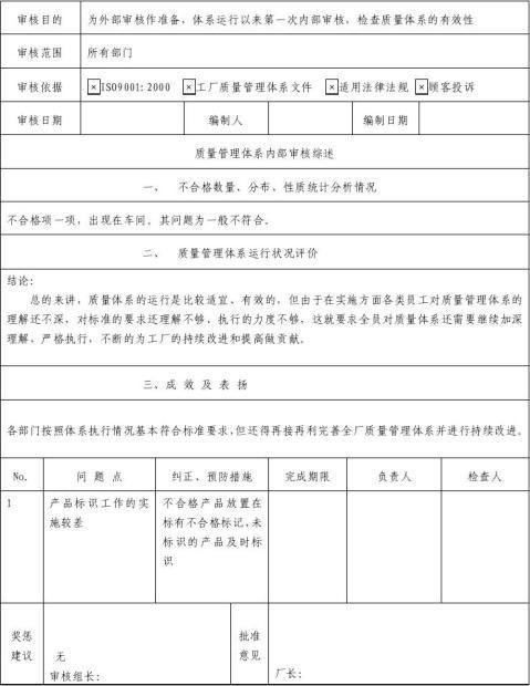 内部质量管理体系审核报告表格模板DOC格式