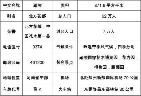 鄢陵市市场调研分析报告2